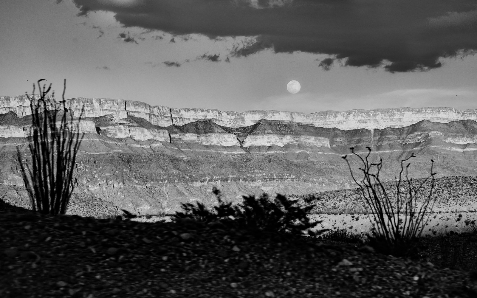Moonrise in Big Bend